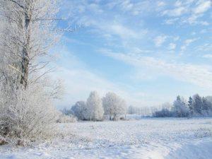 Winterlandschaft, Beelitz