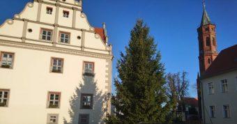 Rathaus Niemegk Dezember 2018