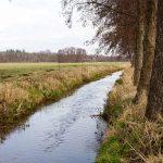 Nuthe, Lindauer Nuthe, Rundweg Lindau, Naturpark Fläming