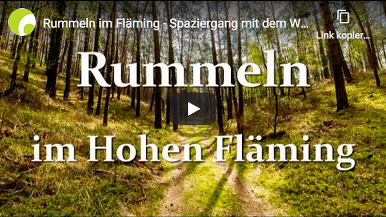 Rummeln im Fläming, Wildnisschule Hoher Fläming