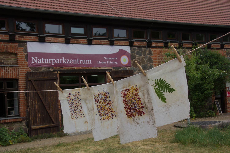 Blütenpapier vor Naturparkzentum Hoher Fläming in Raben