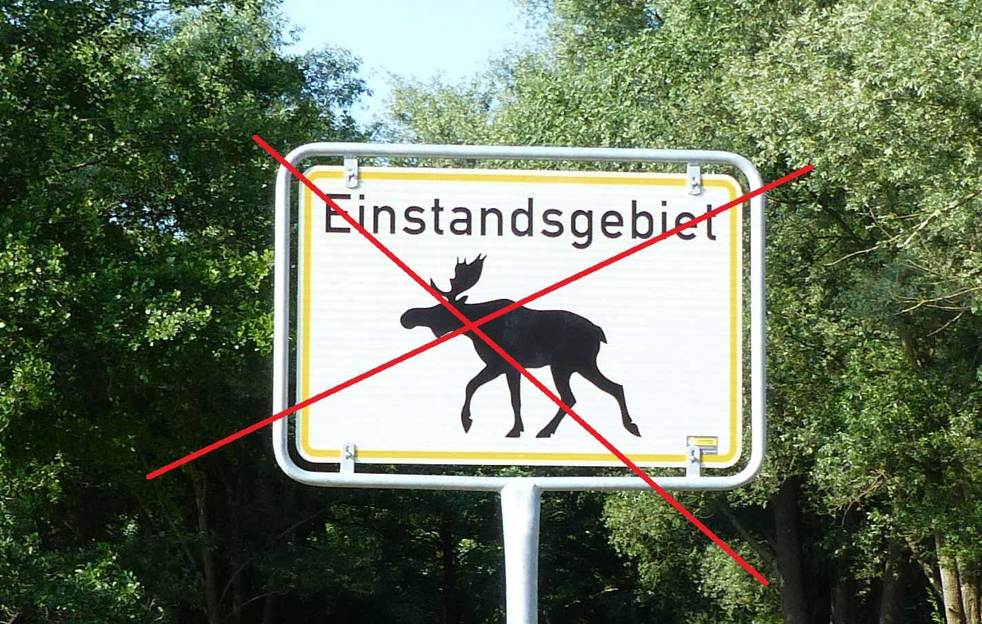Elch-Schild