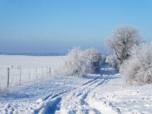Reetz, Frost, Winter, Fläming