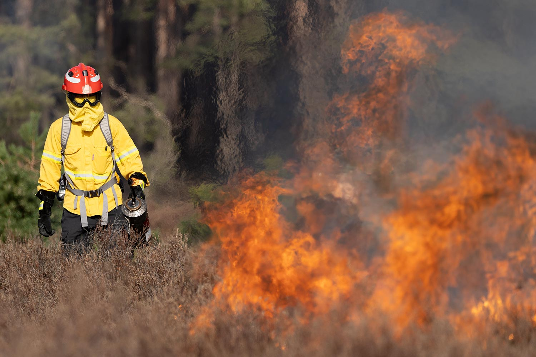Werbiger Heide, Flammen